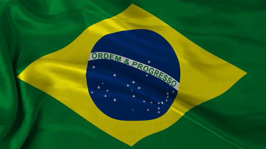 I will build 55 Brazil Local SEO Citation