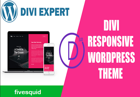 I will Install And Customize Wordpress Divi Theme