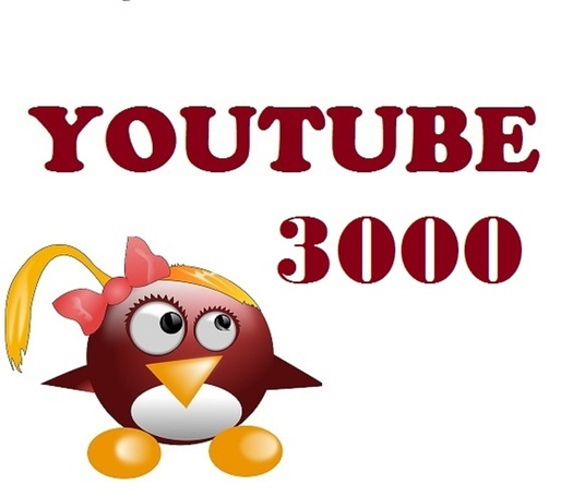 I will provide 3000 Youtube views, Splitable