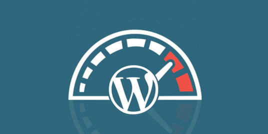 I will optimize WordPress website speed