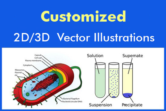 I will  draw educational illustration vector characters