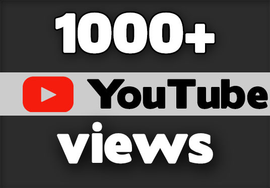 I will provide 1000+ youtube video views