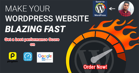 I will Speed Up Your WordPress site