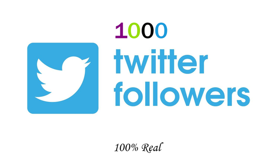 I will provide you 1000 Twitter Followers