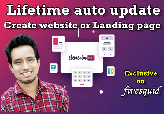 I will Create Website Or Landing Page Using Elementor Pro