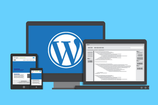 create you a professional and high-performance Website/Blog on Wordpress