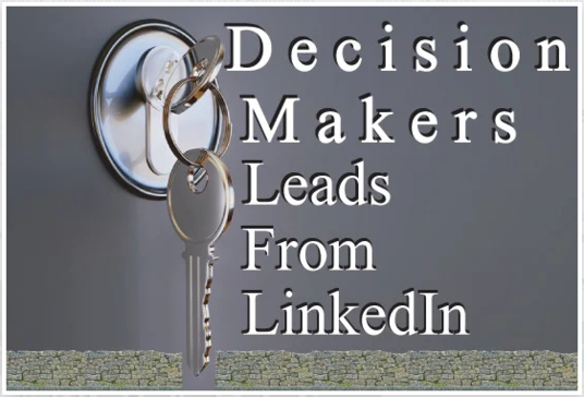 I will collect CEO level leads using LinkedIn sales navigator