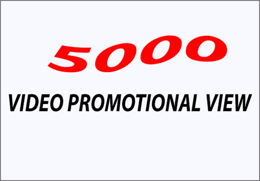 I will Add 5000+ High Quality Ad-sense Safe & Non Drop Views on your Video