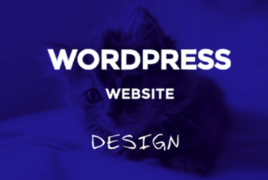 I will Build Modern WordPress Website or Redesign Website