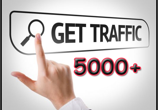 I will Give You 5000+ Real USA Website Traffic