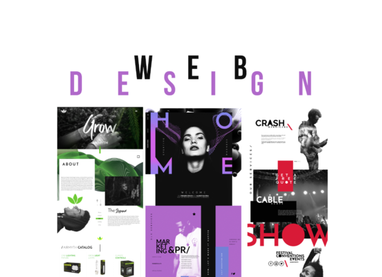 I will design a website