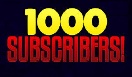 I will provide 1000 youtube subscribers
