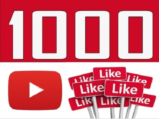 I will provide 1000 likes for your youtube videos