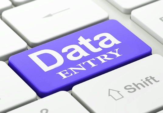 I will do any data entry work