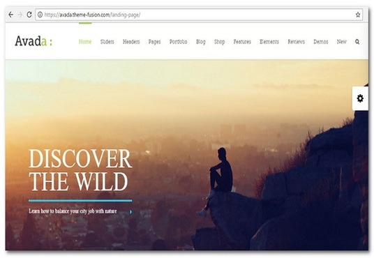 I will customize a single page website  using avada theme  in wordpress