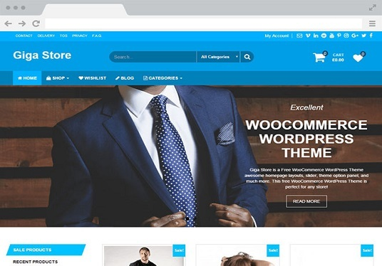I will Install Wordpress Theme And Setup Demo