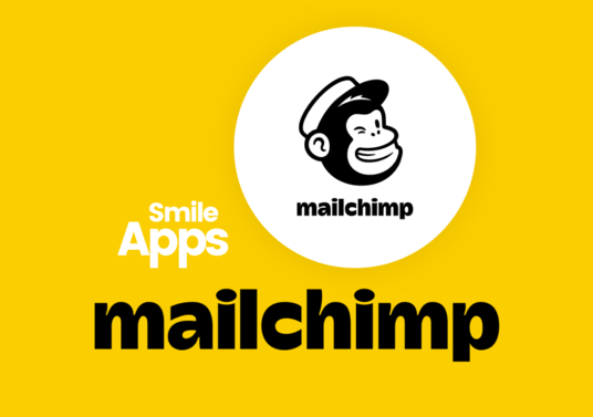 I will Be Your Mailchimp Expert