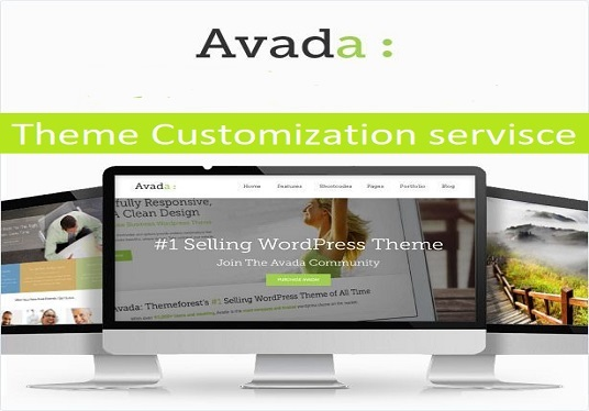 I will Build A Professional Website Using Avada Theme