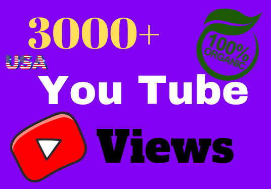 I will add 2600+ Youtube Views