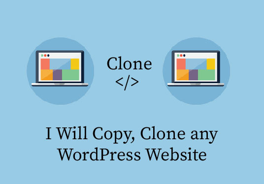 I will Copy, Clone Or Duplicate A Wordpress Website