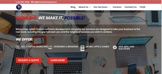 I will develop a website for your company