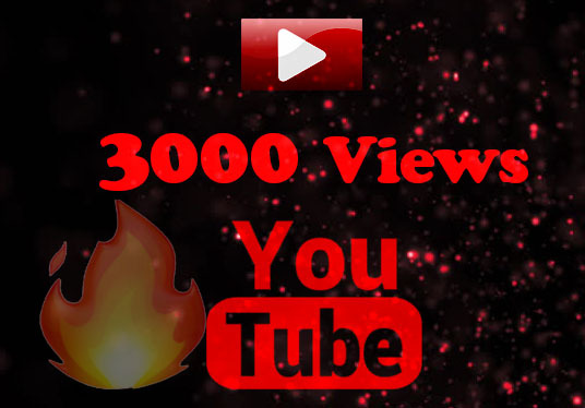 I will Provide 1000+ Views for Your YouTube Video