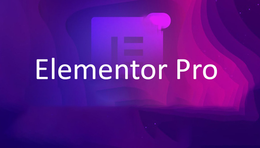 I will design and build wordpress website using elementor Pro