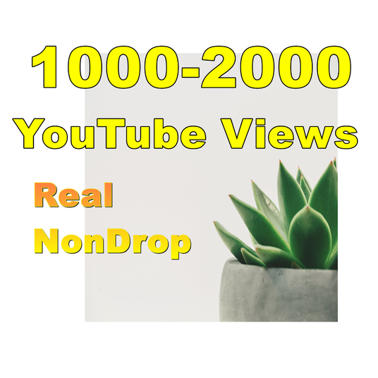 I will give you real 1000-2000 YouTube Views