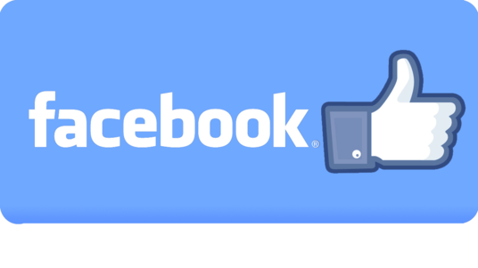 I will Provide 2000+ Facebook Page Likes