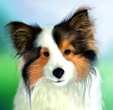 Create pet portrait on Realistic Digital Painting