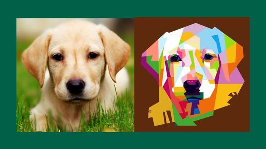 I will draw awesome pop art of your pets