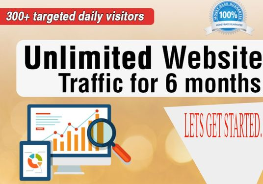 I will Send Unlimited Website Traffic For 6 Months