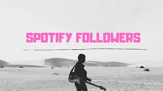 I will Provide you  Real 1500+ Spotify Followers