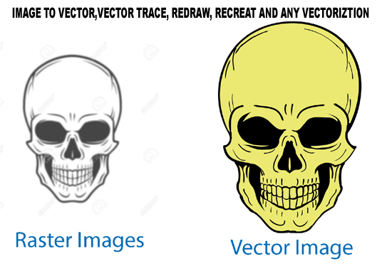 I will do Vector tracing and Logo tracing
