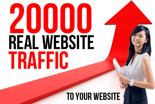 I will Promote Your Website Or Blog And Increase Your Traffic