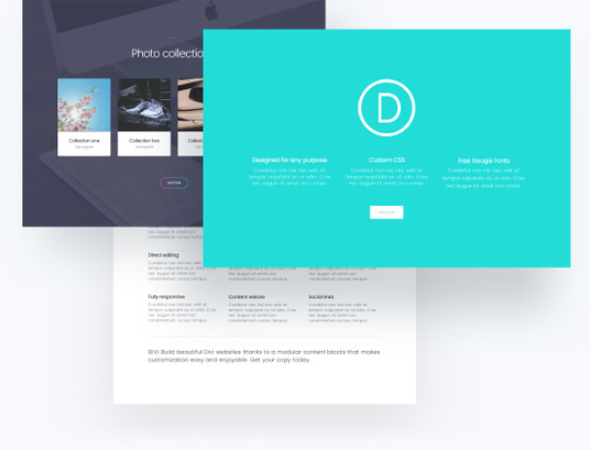 I will Customize Wordpress Divi Theme Within Short Time