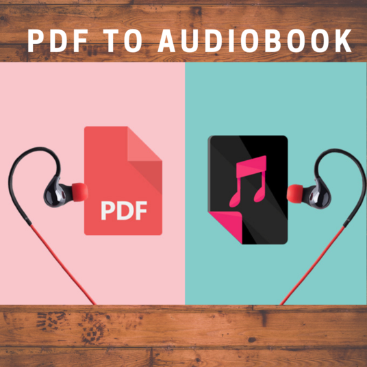 I will in 1 day convert your ebook to an audiobook
