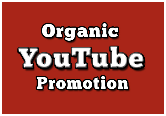 I will give you 1000+ YouTube video views