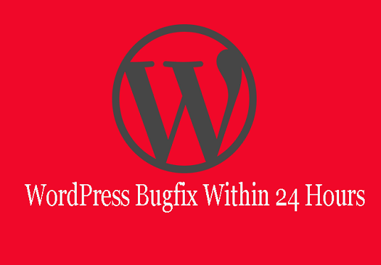 I will do WordPress error and bug fix