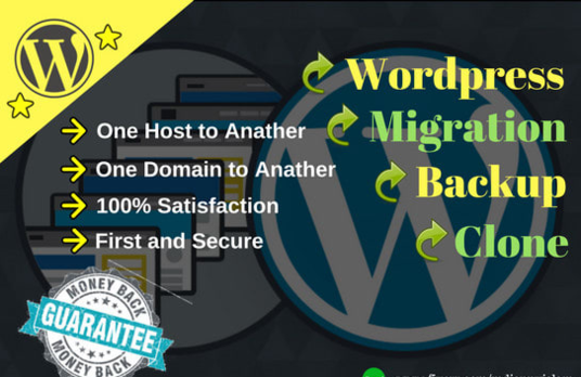 I will clone and copy, move or transfer any website on Wordpress