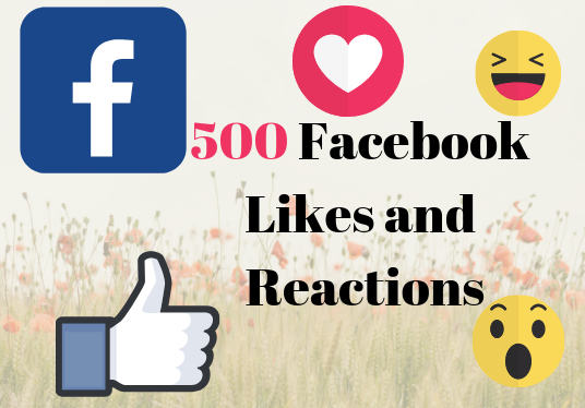 I will Give You Real 500 Facebook Likes And Reactions