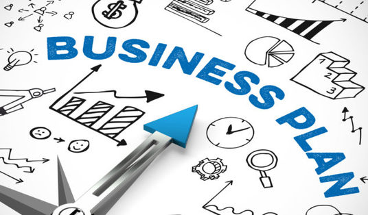 I will improve your business plan and write the executive summary