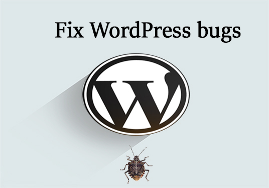I will fix wordpress and design errors and issues