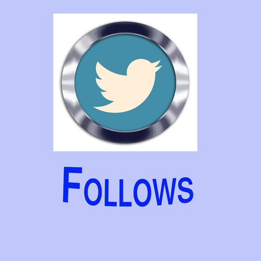 I will deliver 1000 twitter followers