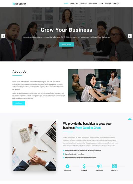 I will make wordpress portfolio website