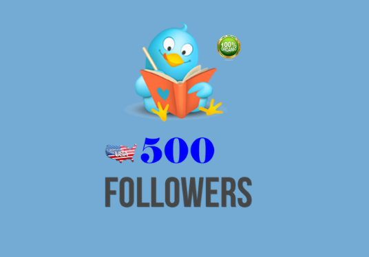provided 500  real USA  targeted twitter followers