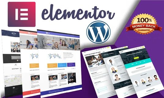 I will Design Wordpress Website Using Elementor Pro Page Builder in 24 hr