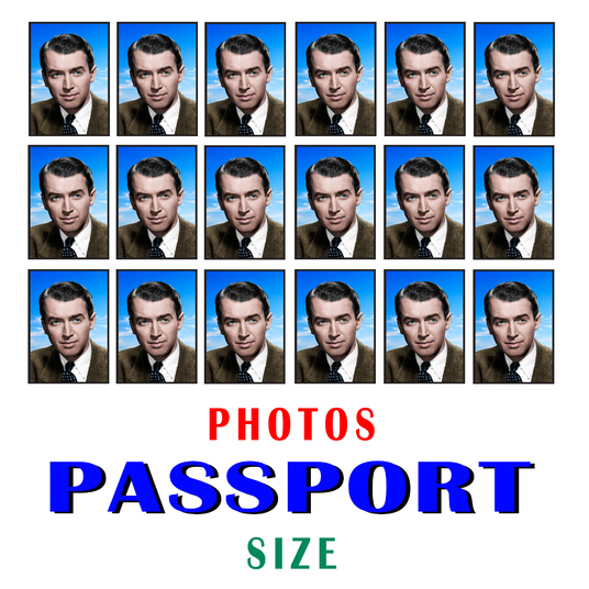 I will make your any photo into passport size photo