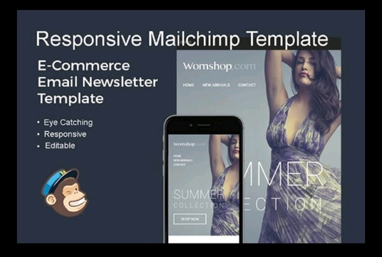 I will Design Responsive mailchimp Email Template & Newsletter