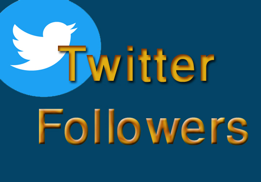 I will Promote your Twitter Account and give You Real followers